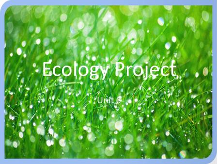 Ecology Project Unit 6 This is an on-going unit project where students will produce a small poster about ecology that will be done in stages as concepts.