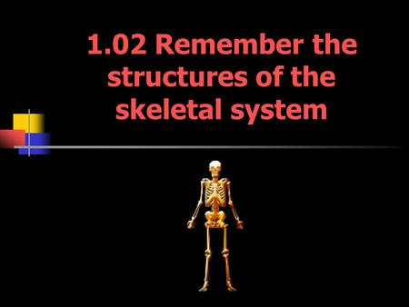 1.02 Remember the structures of the skeletal system.