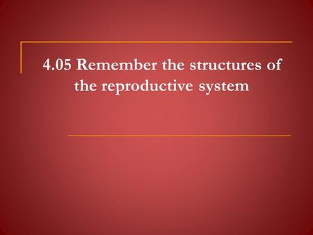 4.05 Remember the structures of the reproductive system.