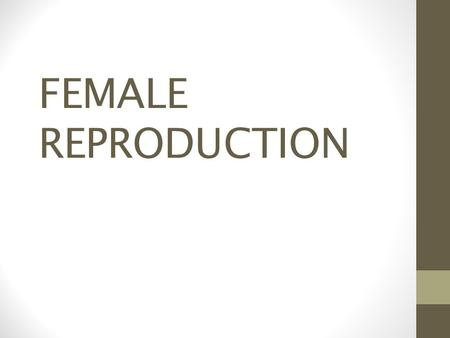 FEMALE REPRODUCTION.