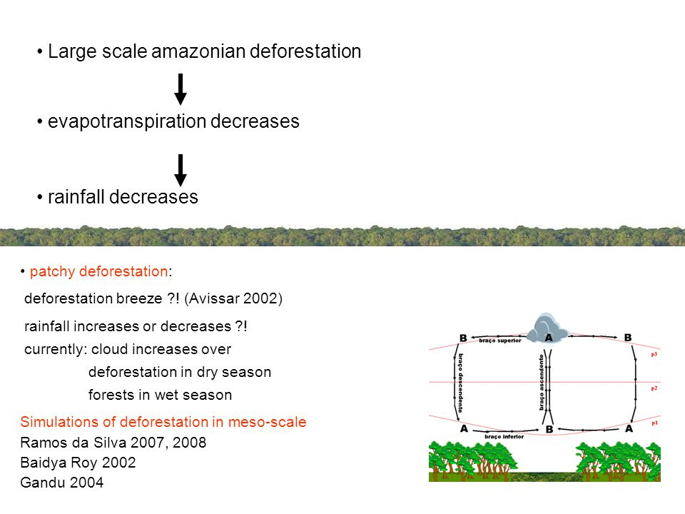 Objective Evaluate impacts of tropical patchy deforestation on local circulation and rainfall, using atmospheric modelling With dependence of size & alignment relative to large scale wind also: how large scale flow might combine deforestation breeze, and thus controls rainfall