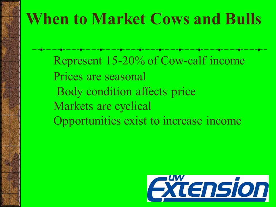 Seasonal Cow Prices (1989-2003)
