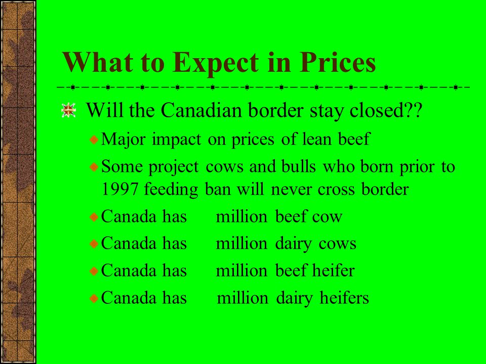 Opportunity for higher cow prices with rising fed cattle prices.