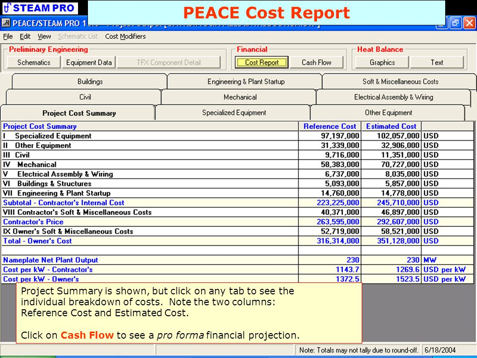 STEAM PRO PEACE Cash Flow This Financial Summary table displays the overall results of the pro forma Cash Flow projection detailed in the subsequent tab.