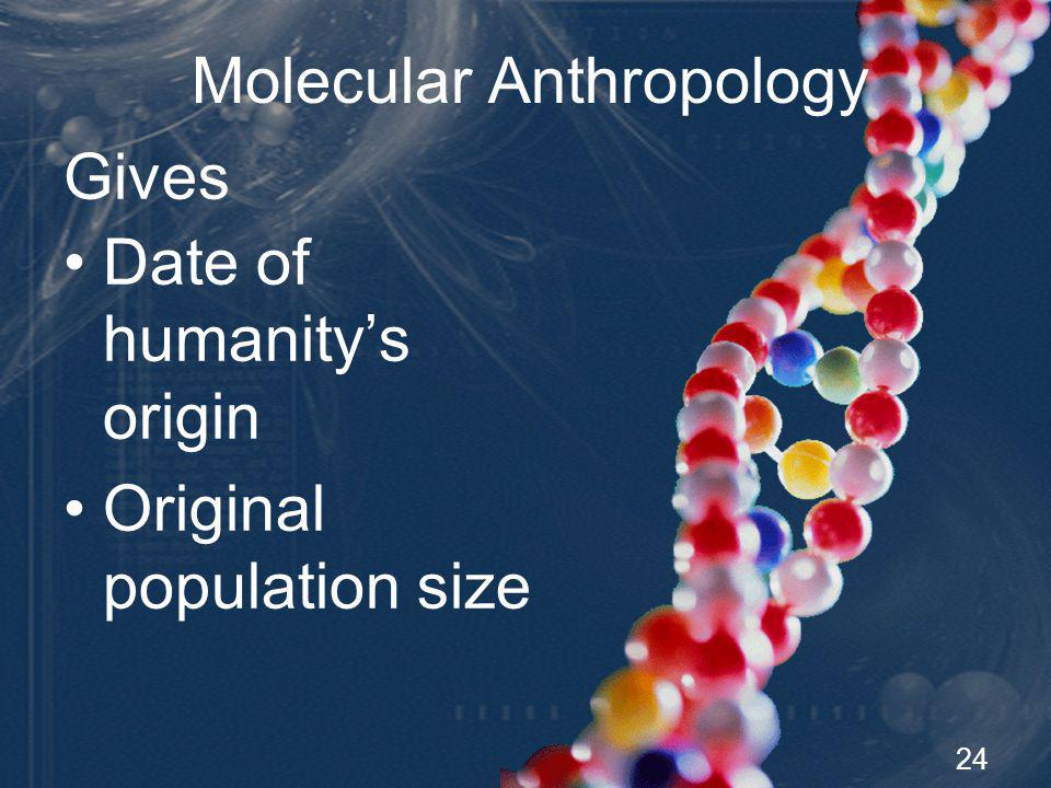 25 Molecular Anthropology Gives Pattern for humanitys spread Geographic location of humanitys origin