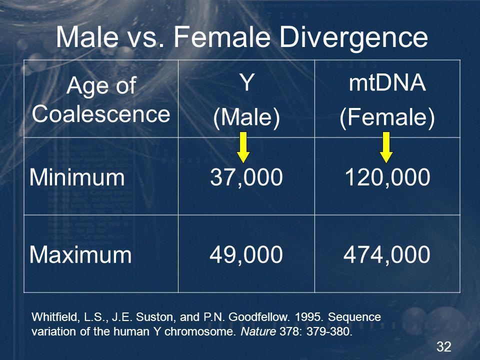 33 Y Chromosome Summary Humanity originated less than 50,000 ya Small population of men Single location (Africa)