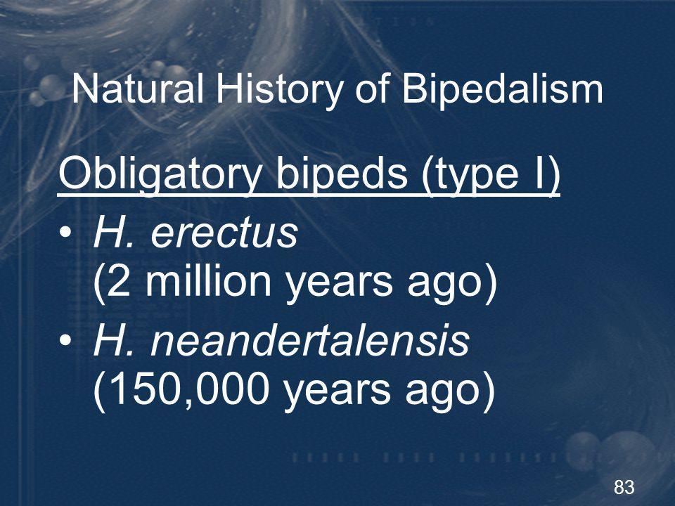 84 Natural History of Bipedalism Obligatory bipeds (type II) Homo sapiens sapiens (modern humans) (50,000 years ago)