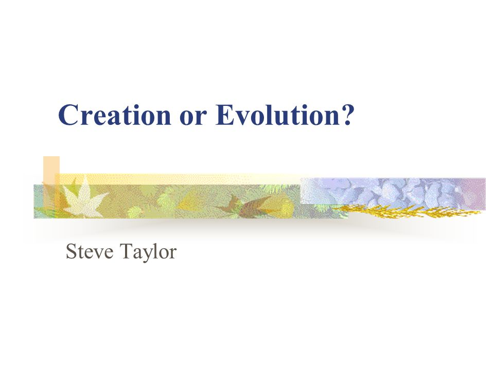 Outline What are the issues.Definition of terms Evolution – the problems What about the fossils.