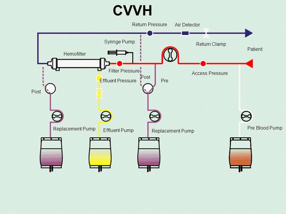 © 306100135 CVVHD-Diffusion Continuous veno-venous hemodialysis Requires the use of blood, effluent and dialysis pumps.