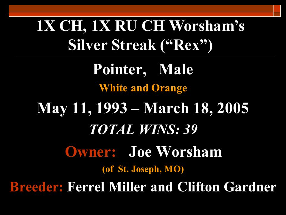 1X Ch, 1X RU CH Worshams Silver Streak (Rex) The election of CH Worshams Silver Streak this year adds the fourth non- Kansas resident dog to the Kansas Field Trial Hall of Fame.