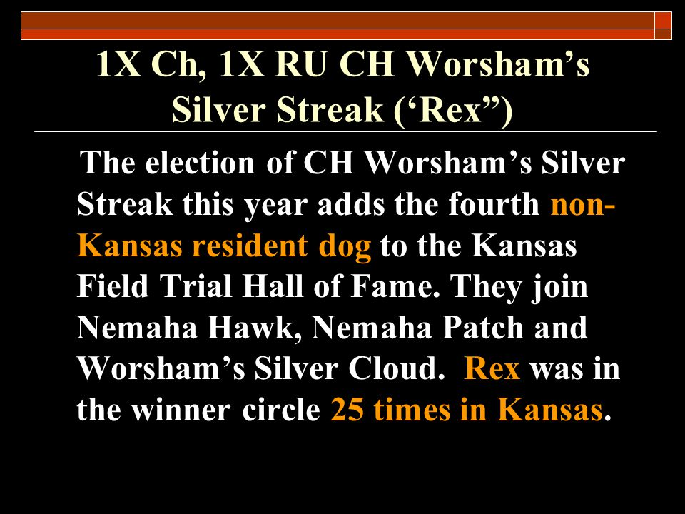 1X CH, 1X RU CH Worshams Silver Streak (Rex) Significant Placements Mid America Open AA Championship – Winner 1998 (44 dogs and 1.5 hour braces) Region 8 All Age Championship – Runner Up (44 dogs) Region 8 Open AA – Winner 2000 (38 dogs) Qualifier for the Ames based National Championship) Eight Classic wins (2 Derby, 6 AA)
