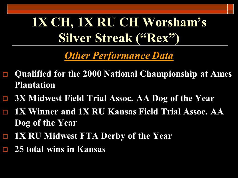 1X CH, 1X RU CH Worshams Silver Streak (Rex) Rex won the Bill Brown Prairie Award in 1998