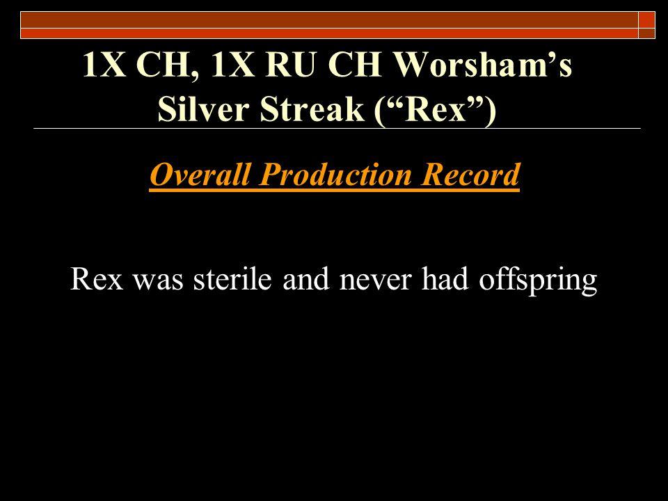 1X CH, 1X RU CH Worshams Silver Streak (Rex) Rex was out of the blue hen Sally Shadow Doe by CH Millers Silver Bullet.