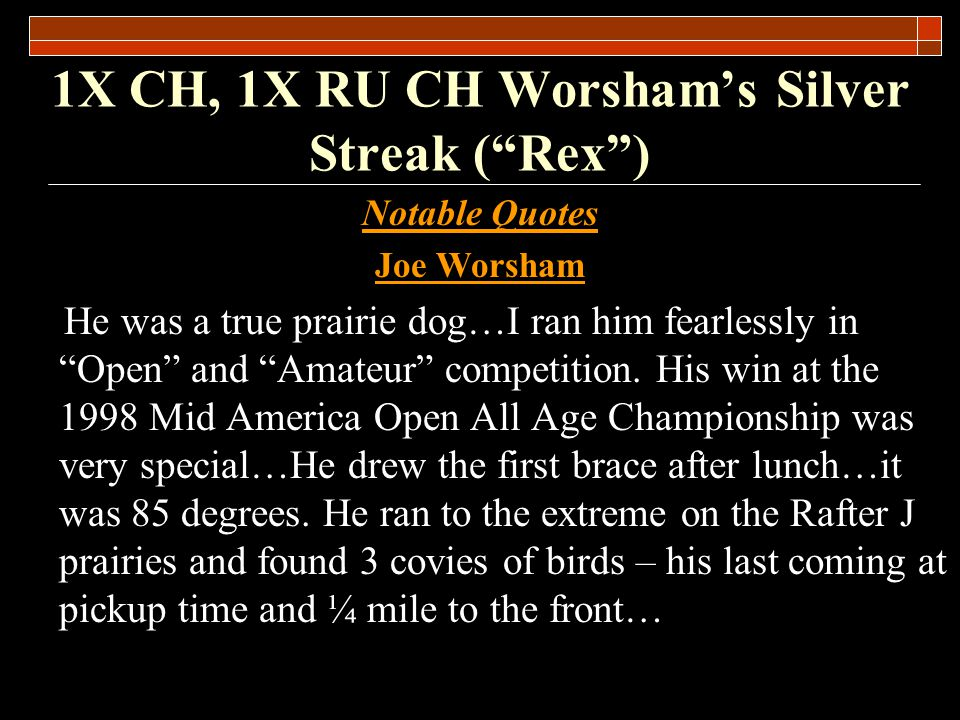 1X CH, 1X RU CH Worshams Silver Streak (Rex) Rex was a pick of the litter pup for Ferrel Miller.