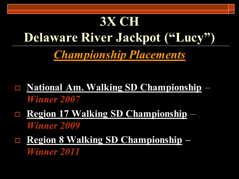 Other Significant Placements Lucy won three Kansas Dog of the Year awards (winner – derby, winner SD, RU SD) 3X CH Delaware River Jackpot (Lucy)