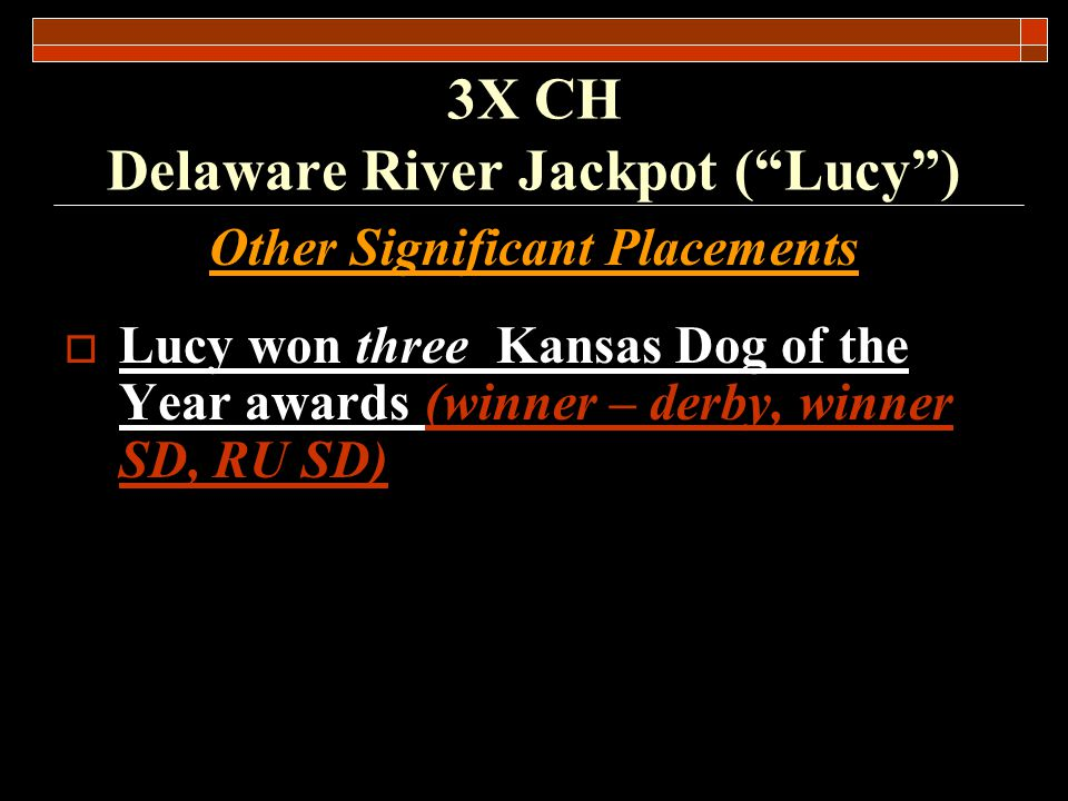 Pedigree Information CH Gailens Lotto was bred to Delaware River Babe to produce CH Delaware River Jackpot.