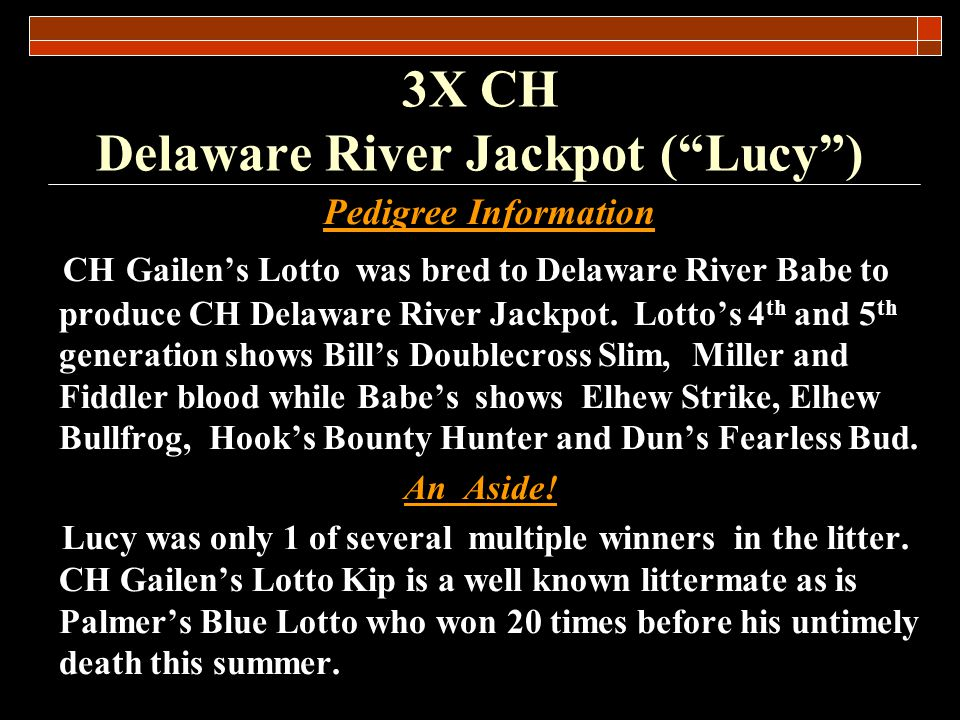 3X CH Delaware River Jackpot (Lucy) Quotes Josh Palmer Her impact on the sport will not be measured through her progeny as none exist, rather her impact can be measured by the requirement to work harder, train harder and compete harder that she inspired in any competitor… that set out to win against her.