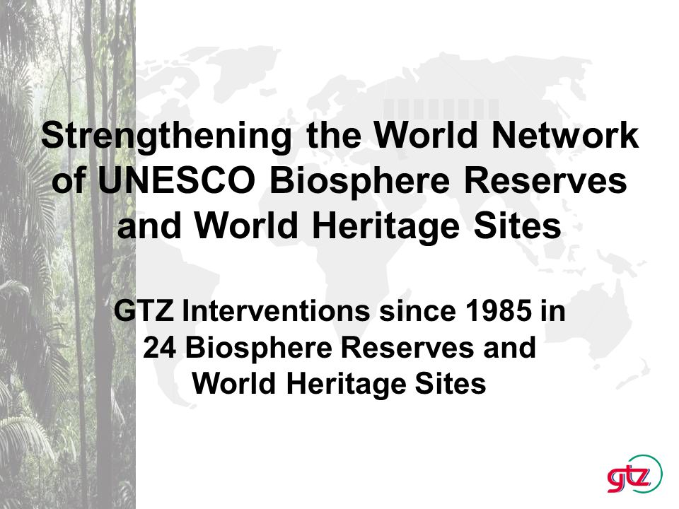 Main GTZ Activities: Assisting developing and transition countries to apply for World Heritage Sites Supporting partner countries to manage World Heritage Sites sustainably Financing feasability studies to establish World Heritage Sites and Biosphere Reserves