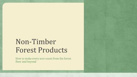 Non-Timber Forest Products How to make every acre count from the forest floor and beyond.