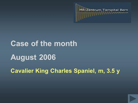 Case of the month August 2006 Cavalier King Charles Spaniel, m, 3.5 y.