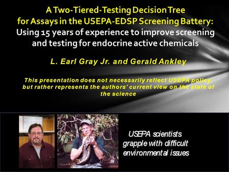 A Two-Tiered-Testing Decision Tree for Assays in the USEPA-EDSP Screening Battery: Using 15 years of experience to improve screening and testing for endocrine.