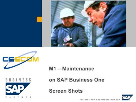 M1 – Maintenance on SAP Business One Screen Shots.