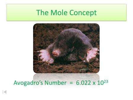 The Mole Concept Avogadro's Number = 6.022 x 10 23.