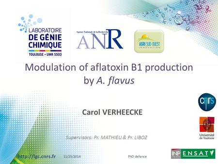 Modulation of aflatoxin B1 production by A. flavus
