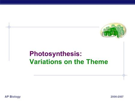 AP Biology 2006-2007 Photosynthesis: Variations on the Theme.