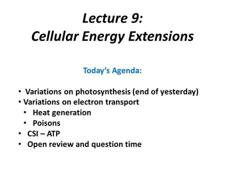 Cellular Energy Extensions