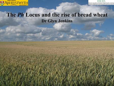 The Ph Locus and the rise of bread wheat Dr Glyn Jenkins.
