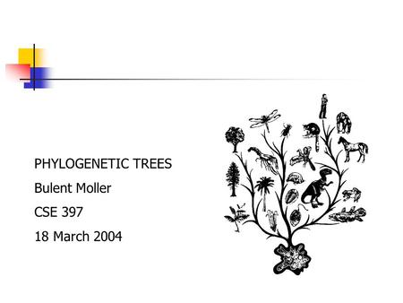 PHYLOGENETIC TREES Bulent Moller CSE 397 18 March 2004.