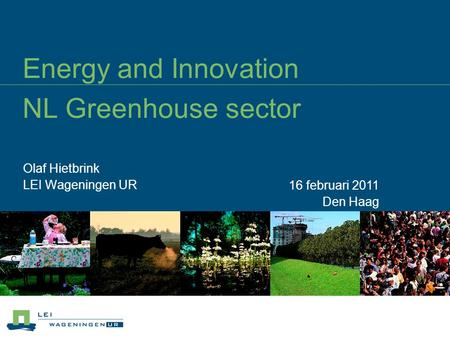 Energy and Innovation NL Greenhouse sector Olaf Hietbrink LEI Wageningen UR 16 februari 2011 Den Haag.