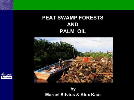 PEAT SWAMP FORESTS AND PALM OIL by Marcel Silvius & Alex Kaat.