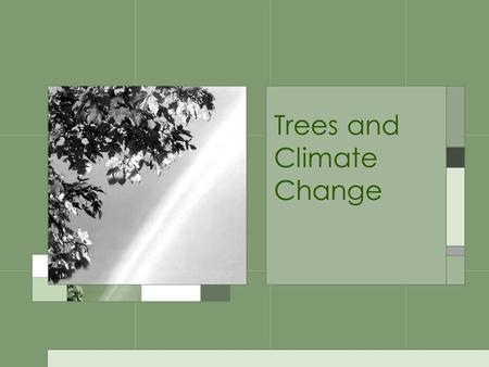 Trees and Climate Change. Global Warming the recent increase of the mean temperatures in the earth's atmosphere and oceans which is predominantly caused.