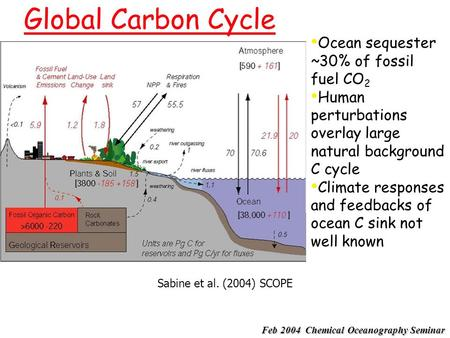 Global Carbon Cycle Sabine et al. (2004) SCOPE Ocean sequester ~30% of fossil fuel CO 2 Human perturbations overlay large natural background C cycle Climate.