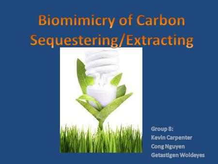 What is the topic? The topic is about how is Biomimicry of co2 sequestering is reducing carbon dioxide gas from the atmosphere. Carbon dioxide (CO 2 )
