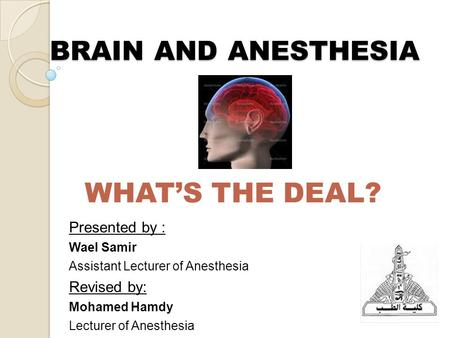 BRAIN AND ANESTHESIA WHAT'S THE DEAL? Presented by : Wael Samir Assistant Lecturer of Anesthesia Revised by: Mohamed Hamdy Lecturer of Anesthesia.