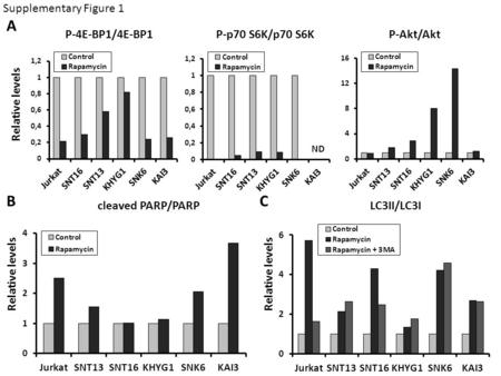 P-4E-BP1/4E-BP1P-p70 S6K/p70 S6K ND cleaved PARP/PARPLC3II/LC3I Supplementary Figure 1 Relative levels A BC P-Akt/Akt.