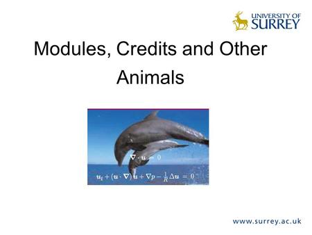 Modules, Credits and Other Animals. Modules & Credits What is a module? –Self-contained assessed period of learning in programme of study –Mixture of.