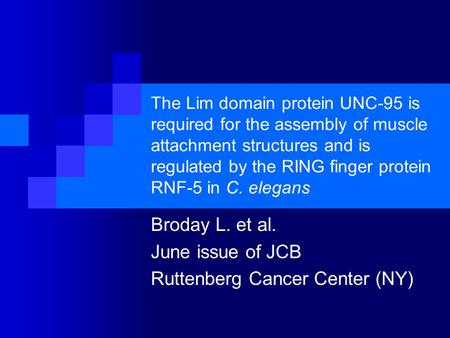 The Lim domain protein UNC-95 is required for the assembly of muscle attachment structures and is regulated by the RING finger protein RNF-5 in C. elegans.