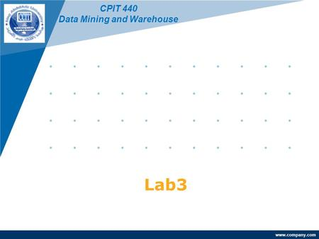 Www.company.com Lab3 CPIT 440 Data Mining and Warehouse.