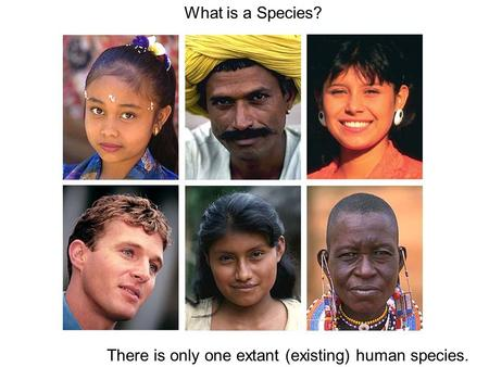 What is a Species? There is only one extant (existing) human species.