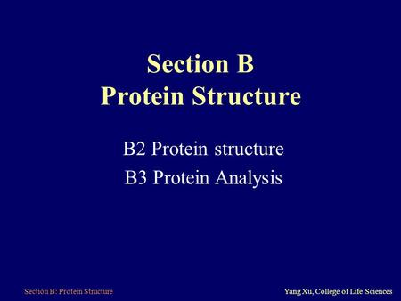 Section B: Protein StructureYang Xu, College of Life Sciences Section B Protein Structure B2 Protein structure B3 Protein Analysis.