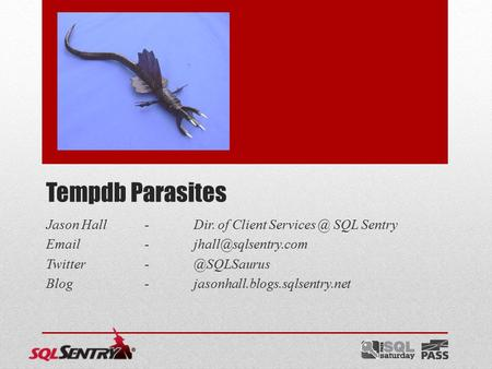 Tempdb Parasites Jason Hall-Dir. of Client SQL Sentry  Blog-jasonhall.blogs.sqlsentry.net.