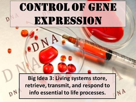 Control of Gene Expression Big Idea 3: Living systems store, retrieve, transmit, and respond to info essential to life processes.