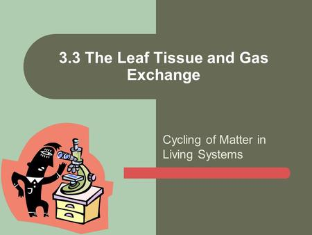 Cycling of Matter in Living Systems 3.3 The Leaf Tissue and Gas Exchange.