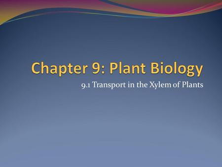 Chapter 9: Plant Biology