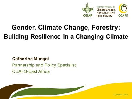 Gender, Climate Change, Forestry: Building Resilience in a Changing Climate Catherine Mungai Partnership and Policy Specialist CCAFS-East Africa 3 October.