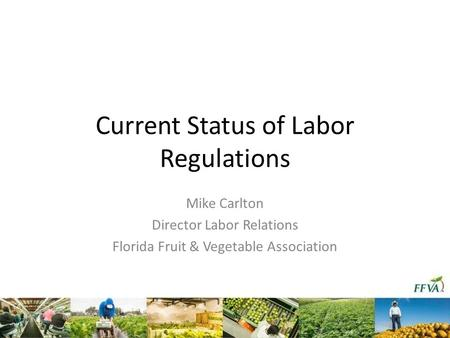Current Status of Labor Regulations Mike Carlton Director Labor Relations Florida Fruit & Vegetable Association.